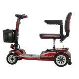 """""""trotinette"""" elétrico da mobilidade da Pesado-Carga de quatro rodas com motor de Formosa (NY-TW26)"""