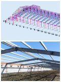 Poultry prefabbricato Shed Designed e Constructed per Un Stop