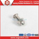 Zinc-PlatedステップボルトDIN603/きっかりヘッドステップボルトDIN605