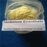 Steroid Quellaufbauende Hormone leistungsfähiges Trenbolone Enanthate für Bodybuilding