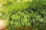 Herbe artificielle résistante de l'eau pour le football et des terrains de football
