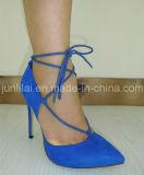 Dame Shoes met de Hiel van de Stiletto