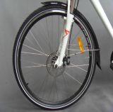 250Wリチウム電池都市電気自転車(JSL033A)