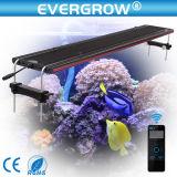 48inch Evergrow 산호초 바다 암초 성장을%s 이용된 LED 수족관 빛