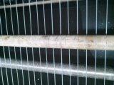 Azoto Wiping Device per Steel Wire Galvanizing