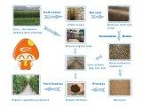 Ökonomische Pilze Pilz-Produktions-Maschinerie für Verkauf