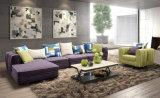 Sofá Home moderno popular da tela da sala de visitas ajustado (HC1302A)