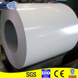 HauptPrepainted Galvanized Steel Sheet in Coils From China