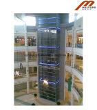 Панорамное Elelvator с стеклянным подъемом 800kg
