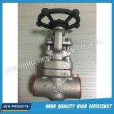 Válvula de globo forjada do aço inoxidável F316L