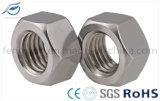 Noix Hex d'acier du carbone de la qualité DIN934