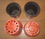 Fsct-770570 automatisch Vacuüm en Machine Thermoforming