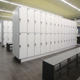 Fumeihua 2 Tür-Speicher-phenoplastisches lamellenförmig angeordnetes Tastaturblock-Schließfach