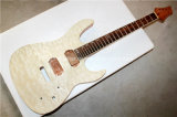 Hanhai Musik-/Fotorezeptor-Art-elektrische Gitarren-Installationssatz mit Gitarre der Magogany Karosserien-/DIY