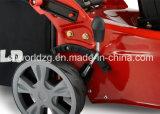 Type tondeuse à gazon automotrice (WD22) d'essence