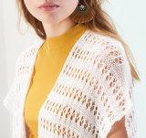 Rivestimento lungo del Crochet del maglione del manicotto del collo di modo V delle donne