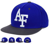Form Design Snapback Flat Hats mit Embroidery Logo