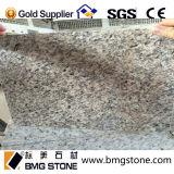 싱크대 Vanitytop를 위한 자연적인 돌 제국 빨간 화강암