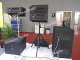 Compensato della betulla 12 pollici - audio riga casella dell'alto codice categoria dell'altoparlante del DJ