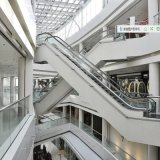 Escalator al aire libre con la Suma-Elevator Multi-Function de Good Quality Competitive Price