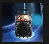 Le meilleur orateur de cuir de karaoke de Bluetooth de cadeaux de Noël de première vente