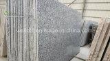Plakken van het Graniet van de Golf van de nevel de Witte, Witte voor Countertop