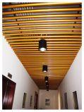 De eenvoudige maar Aantrekkelijke Tegels van het Plafond van het Aluminium Decoratieve