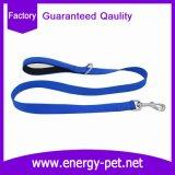 Productos del animal doméstico de la correa de los accesorios del surtidor de China del correo del perro