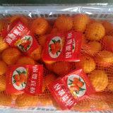 Fornecedor de Golde do mandarino doce do bebê