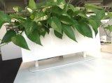 Uispair 100% Stahl-Quadrat-Tischplattenblumen-Potenziometer-Garten-Pflanzer für Büro-Garten-Hotel-Dekoration
