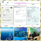 Радиальные покрышки тележки, тележка утомляют (CCC, ISO, МНОГОТОЧИЕ, одобренные ECE, GCC)