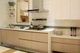 Mobília usada acrílica da cozinha de Craigslist dos gabinetes de cozinha da porta de gabinete (zv-019)