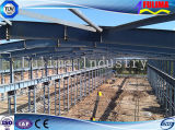 Taller de la estructura de acero con la autentificación de TUV/Sud (FLM-014)