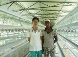 Cage de poulet de couche de machines de ferme avicole de qualité d'Atomatic