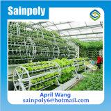 Wasserkulturfabrik-Preis-Film-Gewächshaus des systems-China für die Landwirtschaft