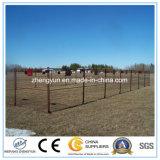 Загородка Китая используемая поставщиком Канады временно/загородка сетки