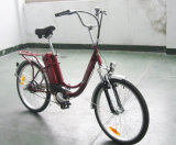 Stadt-elektrisches Fahrrad mit Batterie des Silikon-24V