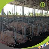 Porc cultivant la stalle galvanisée à chaud de porc de stalle de truie de gestation