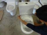 يجعل في الصين خزفيّ أحد قطعة مرحاض ([ست-1008])