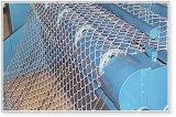 Rete fissa rivestita del PVC o galvanizzata di collegamento Chain per gli animali