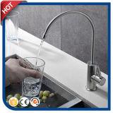Acier du robinet 304#Stainless de filtre d'eau (HC30417)