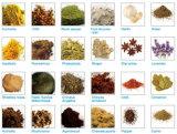 Tabak-Extraktion-Pflanze