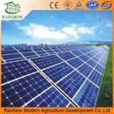 농업 증가를 위한 광전지 온실