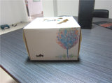 Neues Design Art Paper Cake Box mit Hanlde