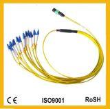 24cores Direct Harness Om3 Om4 MTP/MPO Multi-Mode Fiber Optic Patchcord