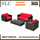 Sofa de rotin de meubles de jardin de rotin (SC-B7016)