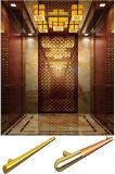티타늄 미러 강철 차를 가진 호텔 전송자 엘리베이터