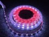 Flexible Strip-60 LEDs/M LED Beleuchtung der UL-5050 Leistungs-