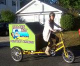 Hardtopの電気合金の貨物Trike