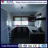 Verschiffen-Hauptbehälter für Verkauf (Haus kann angepasst werden)